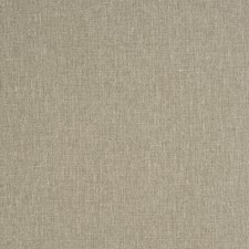 Linden Solid Drapery and Upholstery Fabric by Trend