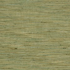 Cactus Texture Plain Drapery and Upholstery Fabric by Trend