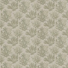 Aloe Jacquard Pattern Drapery and Upholstery Fabric by Fabricut