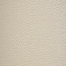Gold Dots Drapery and Upholstery Fabric by Fabricut