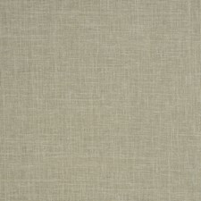 Basil Solid Drapery and Upholstery Fabric by Trend