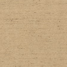 Nutmeg Texture Plain Drapery and Upholstery Fabric by Trend