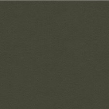 Hunter Solids Drapery and Upholstery Fabric by Lee Jofa