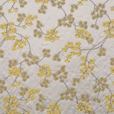 Mimosa Drapery and Upholstery Fabric by RM Coco
