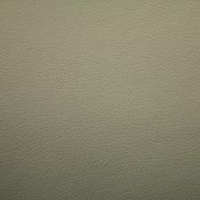 Polar Gray Drapery and Upholstery Fabric by Scalamandre
