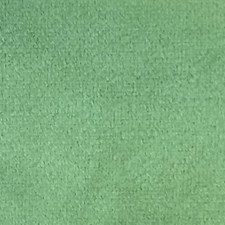 Palm Green Drapery and Upholstery Fabric by Scalamandre