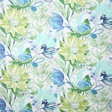 Capri Traditional Drapery and Upholstery Fabric by Pindler