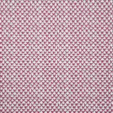 Berry Print Drapery and Upholstery Fabric by Pindler