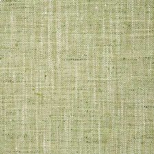 Grass Drapery and Upholstery Fabric by Pindler