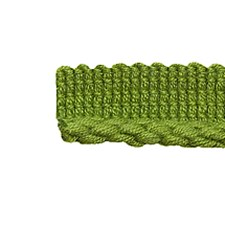 Trim Outdoor Lime Trim by Pindler