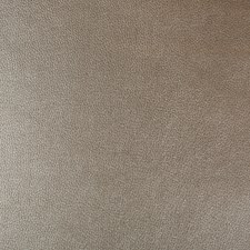 Taupe/Bronze Skins Drapery and Upholstery Fabric by Kravet