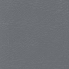 Pegasus Gunmetal Drapery and Upholstery Fabric by Greenhouse
