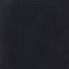Pegasus Ebony Drapery and Upholstery Fabric by Greenhouse