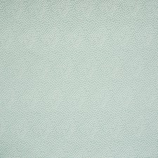 Celestial Solid Drapery and Upholstery Fabric by Greenhouse