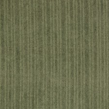 Green Tea Solid Drapery and Upholstery Fabric by Greenhouse