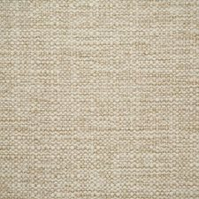 Papyrus Solid Drapery and Upholstery Fabric by Pindler