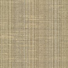 Chino Drapery and Upholstery Fabric by Kasmir