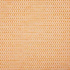 Papaya Solid Drapery and Upholstery Fabric by Pindler