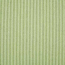 Mojito Stripe Drapery and Upholstery Fabric by Pindler