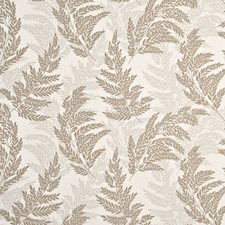 Taupe Drapery and Upholstery Fabric by G P & J Baker