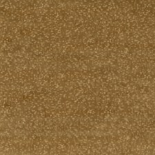 Bronze Velvet Drapery and Upholstery Fabric by G P & J Baker