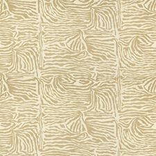 Tan Modern Drapery and Upholstery Fabric by Brunschwig & Fils