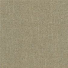 Nile Drapery and Upholstery Fabric by Kasmir
