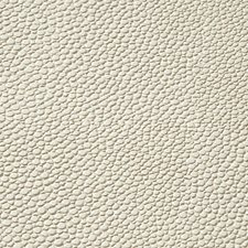 Neige Drapery and Upholstery Fabric by Scalamandre