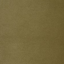 Moss Drapery and Upholstery Fabric by Pindler