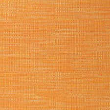 Tangerine Drapery and Upholstery Fabric by RM Coco