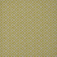 Gooseberry Drapery and Upholstery Fabric by Maxwell