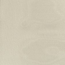 Grigio Verde Drapery and Upholstery Fabric by Scalamandre