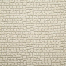 Shell Drapery and Upholstery Fabric by Pindler