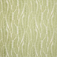Leaf Contemporary Drapery and Upholstery Fabric by Pindler