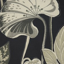 Cavier Drapery and Upholstery Fabric by RM Coco