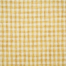 Sunshine Check Drapery and Upholstery Fabric by Pindler