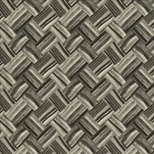 Domino Drapery and Upholstery Fabric by Kasmir