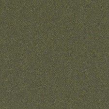 Moss Drapery and Upholstery Fabric by Duralee