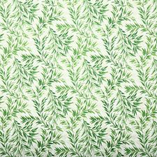 Aloe Traditional Drapery and Upholstery Fabric by Pindler