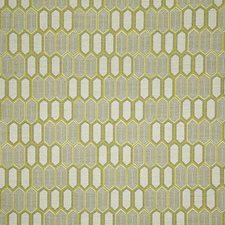 Citrus Drapery and Upholstery Fabric by Pindler