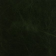 Forest Green Solids Drapery and Upholstery Fabric by Threads