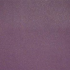 Purple Iris Drapery and Upholstery Fabric by Maxwell