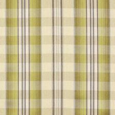 Lemongrass Drapery and Upholstery Fabric by Robert Allen