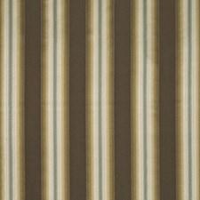Praline Drapery and Upholstery Fabric by Kasmir