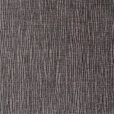 Sesame Chenille Drapery and Upholstery Fabric by Clarke & Clarke