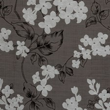 Charcoal Floral Vine Drapery and Upholstery Fabric by Clarke & Clarke
