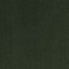 Bay Leaf Solids Drapery and Upholstery Fabric by Clarke & Clarke