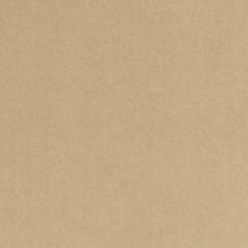 Oyster Solids Drapery and Upholstery Fabric by Clarke & Clarke
