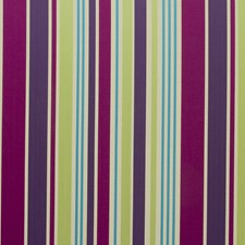 Berry Stripes Drapery and Upholstery Fabric by Clarke & Clarke