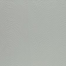 Birch Drapery and Upholstery Fabric by Clarke & Clarke